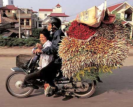 transporting veg on a moped