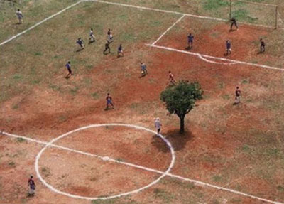tree in middle of pitch
